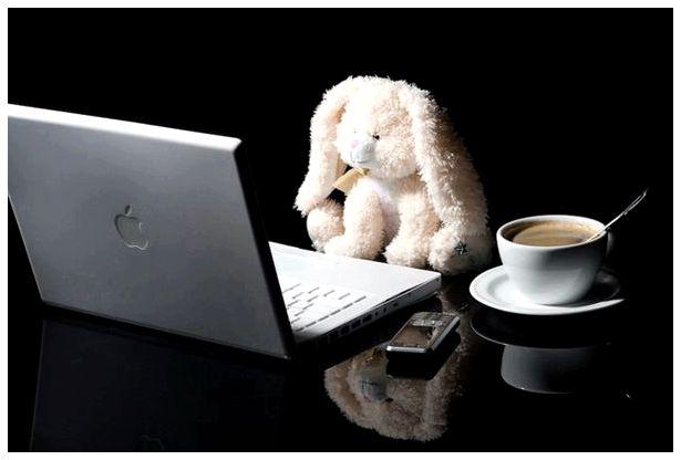 Как стать профессиональным блогером и заработать много денег?